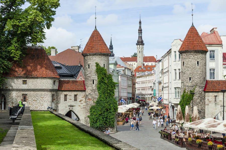 страховка для визы в Эстонию